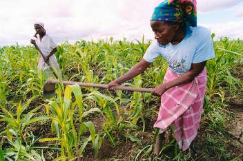 Older women farmers should be central to disaster risk management.