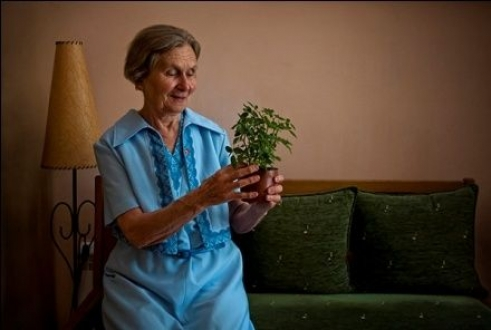 Danica, 78, does important work for ageing issues in her Belgrade community
