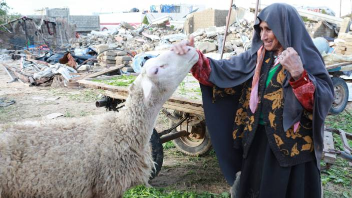 Marzouqa with one of her sheep.