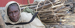 Emayu makes a tiny living selling firewood chopped from her barren lands (c) Erna Mentesnot Hintz/HelpAge International
